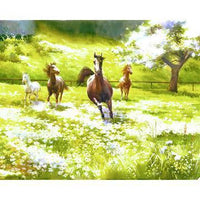Running Horse Diy Paint By Numbers Kits Uk PBN90624