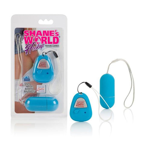 Shane's World Hookup Remote Control Egg Vibe