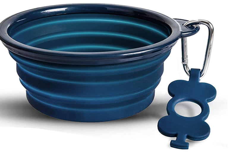 Blue collapsible dog bowl on white background.