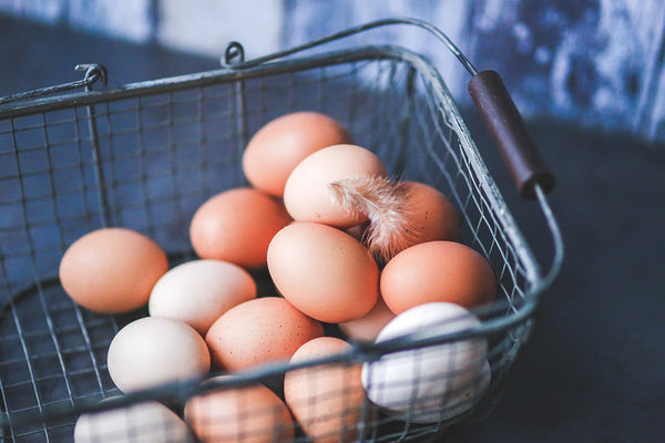 Pasture raised eggs in a basket.