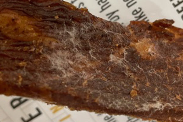 Mold on Beef Jerky