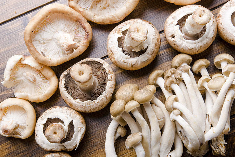 The most common mushrooms are Portobello, Shiitake, Oyster, and King Oyster.