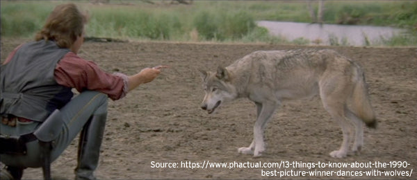 Dances with Wolves Jerky