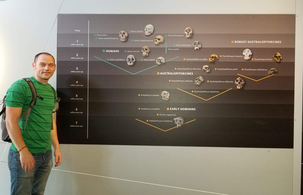 Me beside a timeline depicting the evolution of modern humans at the London Museum of Natural History. Note the split of and subsequent end of the line of the robust australopithecines.