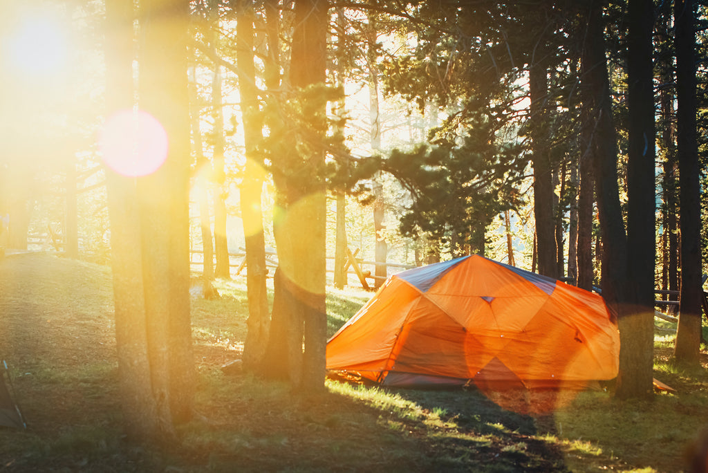 Camping _ Tent in the Woods