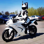 Load image into Gallery viewer, Fearless Kitty Motorcycle Helmet