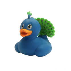 Rubber Duck Peacock