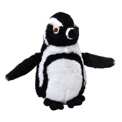 Mini Ecokins Black Footed Penguin 8""