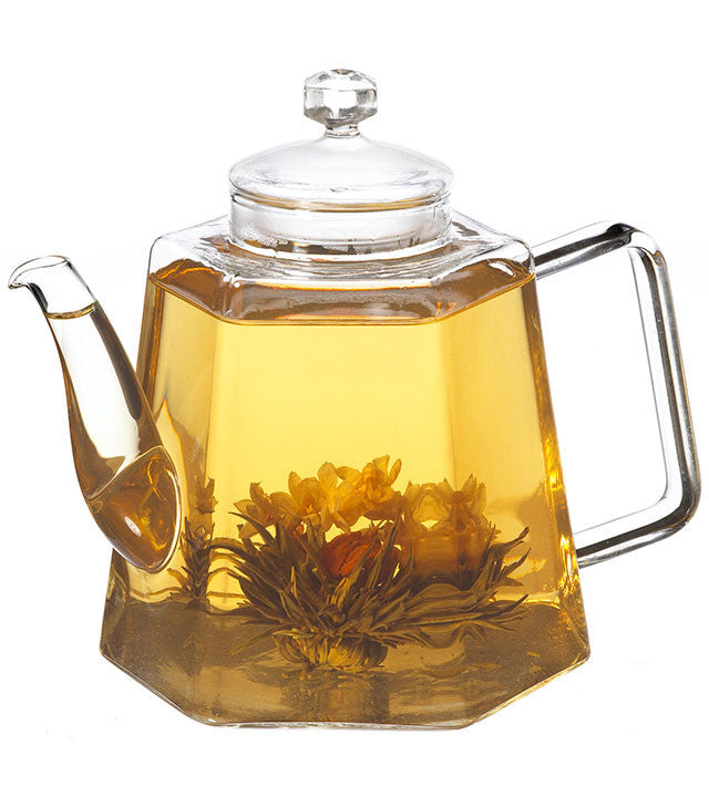 Infuser Teapot: Grosche Vienna - 1200Ml/40 Fl. Oz - Package Of 2 - Teapot
