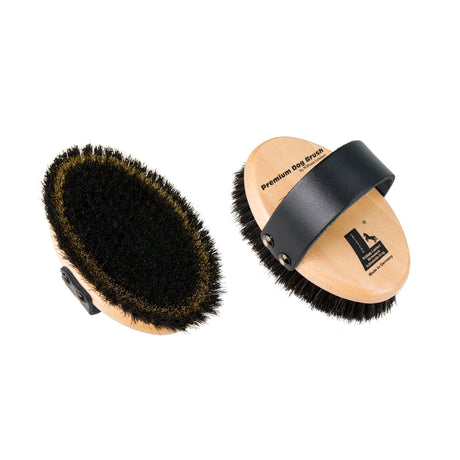 Leistner Natural Bristle Premium Dog Brush with Horse Hair and Wire Small