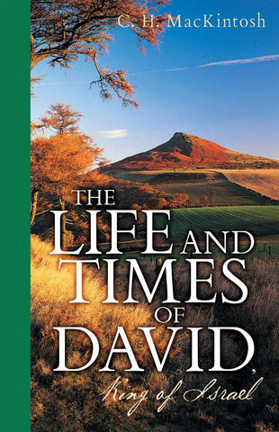 The Life and Times of David