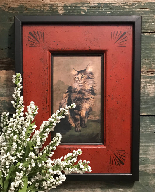 DMC-10 Cat Framed Print