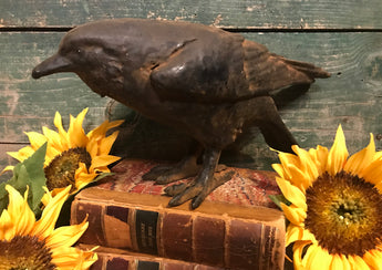 RJ-F1 Wax Coated Crow