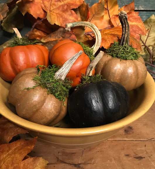 NV-WP Small Wax Coated Pumpkin