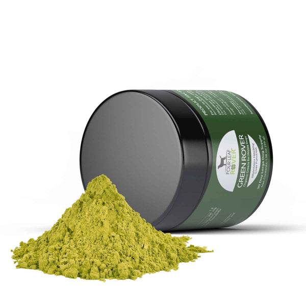 Four Leaf Rover Green Rover Organic and Fermented Greens for Happy and Healthy Dogs | Supplement | Four Leaf Rover - Shop The Paws