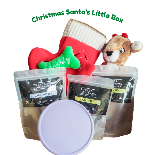 Shopthepaw Christmas Santa Box | Toys | shopthepaw - Shop The Paws