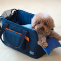 andblank® Pet Carrier Cushion | Accessories | andblank - Shop The Paws