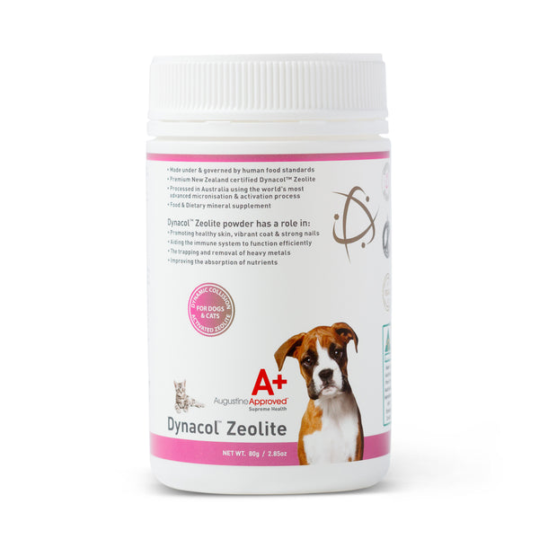 Augustine Approved Dynacol™ Zeolite for Dogs and Cats | Supplement | Augustine Approved - Shop The Paws