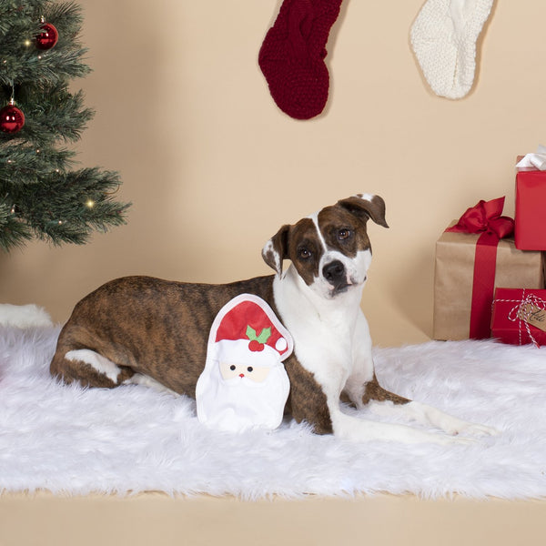 Fringe Studio Unstuffed Santa Face Dog Toy | Toys | Fringe Studio - Shop The Paws