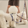 andblank® Graphic Leash - Flying Duck Blue | Accessories | andblank - Shop The Paws