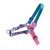 Zee.Dog Aurora Soft Walk Harness - Accessories - Zee.Dog - Shop The Paws