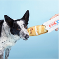 BARK Bonejour Baguette| Frenchies in Paris Dog Toy | Toys | Bark - Shop The Paws