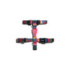 Zee.Dog Chroma Dog H Harness | Accessories | Zee.Dog - Shop The Paws