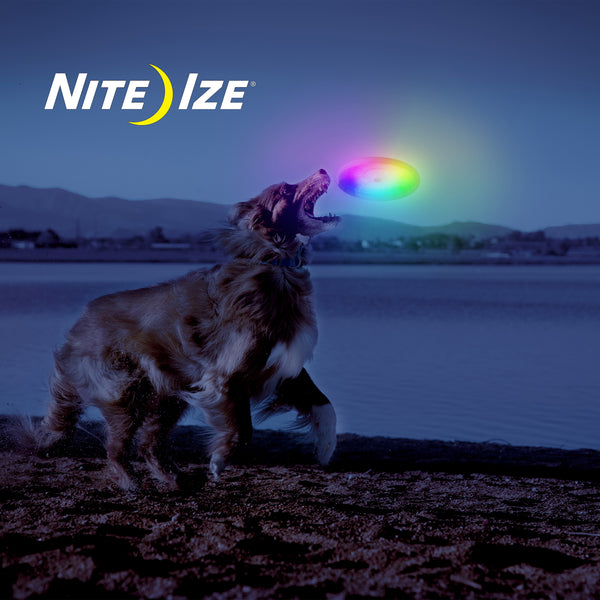 Nite Ize FlashFlight Dog Discuit Flying Disc Soft-Touch LED Frisbee Fetch Toy | Accessories | Nite Ize - Shop The Paws