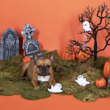 Load image into Gallery viewer, Fringe Studio Halloween Mini Ghosts