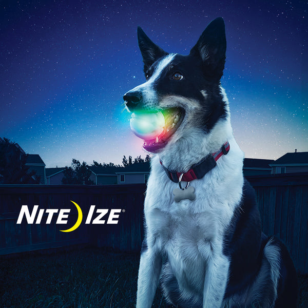 Nite Ize GlowStreak Waterproof Rubber Ball Motion-Activated LED Fetch Toy | Accessories | Nite Ize - Shop The Paws