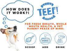 Load image into Gallery viewer, TEEF! Daily Dog Dental Care for Dogs & Cats | Health | TEEF - Shop The Paws
