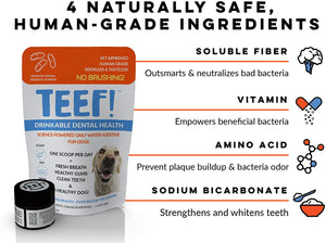 TEEF! Daily Dog Dental Care for Dogs & Cats | Health | TEEF - Shop The Paws