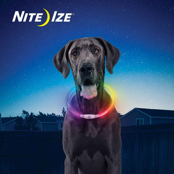 Nite Ize NiteHowl Disc-O Select Rechargeable LED Safety Necklace | Accessories | Nite Ize - Shop The Paws