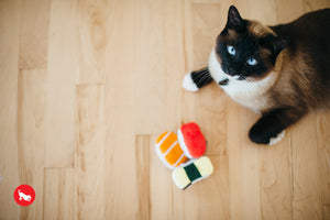 PLAY Feline Frenzy, Cat Toy Set: Sassy Sushi | Toys | P.L.A.Y. - Shop The Paws