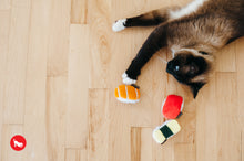 Load image into Gallery viewer, PLAY Feline Frenzy, Cat Toy Set: Sassy Sushi | Toys | P.L.A.Y. - Shop The Paws