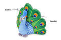 PLAY Fetching Flock Plush Dog Toys - Toys - P.L.A.Y. - Shop The Paws