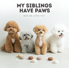 Bite Me My Siblings Latex Dog Toy | Toys | BiteMe - Shop The Paws