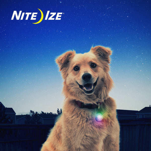 Nite Ize SpotLit Disc-O Select LED Collar Light | Accessories | Nite Ize - Shop The Paws