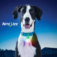Load image into Gallery viewer, Nite Ize SpotLit XL Disc-O Select Rechargeable LED Collar Light | Accessories | Nite Ize - Shop The Paws