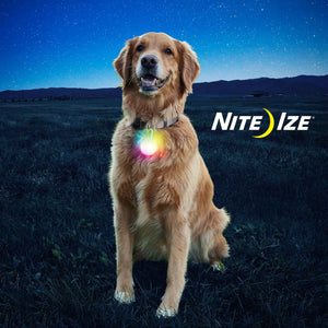 Nite Ize SpotLit XL Disc-O Select Rechargeable LED Collar Light | Accessories | Nite Ize - Shop The Paws