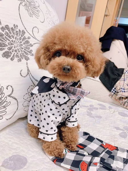 Burberry Pet Scarf | Clothing | shopthepaw - Shop The Paws