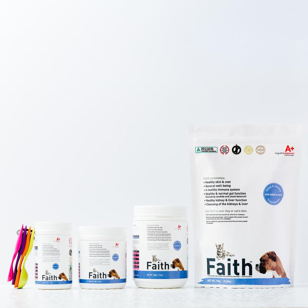 Augustine Approved Faith's Cleanse & Detox | Supplement | Augustine Approved - Shop The Paws