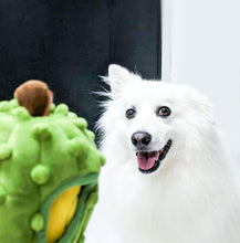 Load image into Gallery viewer, ShopThePaw - Durian Burrow Pet Toy (Special Season) | Toys | shopthepaw - Shop The Paws