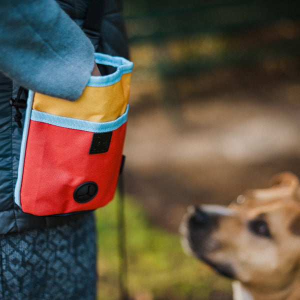 PLAY Deluxe Training Pouch | Landscape Sunrise | Accessories | P.L.A.Y. - Shop The Paws