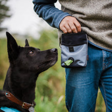 Load image into Gallery viewer, PLAY Deluxe Training Pouch | Landscape Eclipse | Accessories | P.L.A.Y. - Shop The Paws