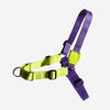 Zee.Dog Lemonade Soft Walk Harness | Accessories | Zee.Dog - Shop The Paws