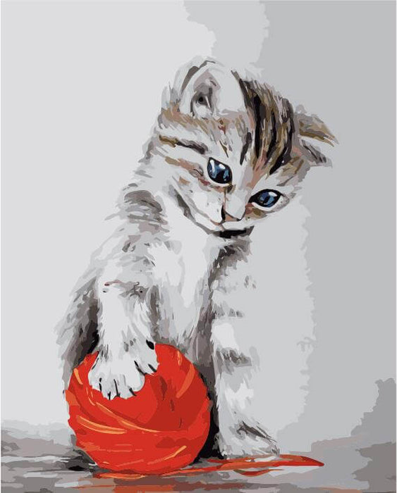 Paint by Numbers - Kitten with a red clew 40x50cm