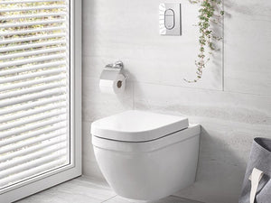 Euro Ceramic Wall-Hung WC Rimless