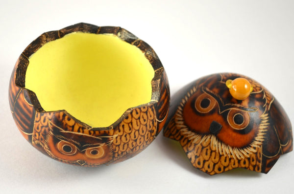 Owl Gourd Box | Owl gifts, keepsake box with open top, gourd art