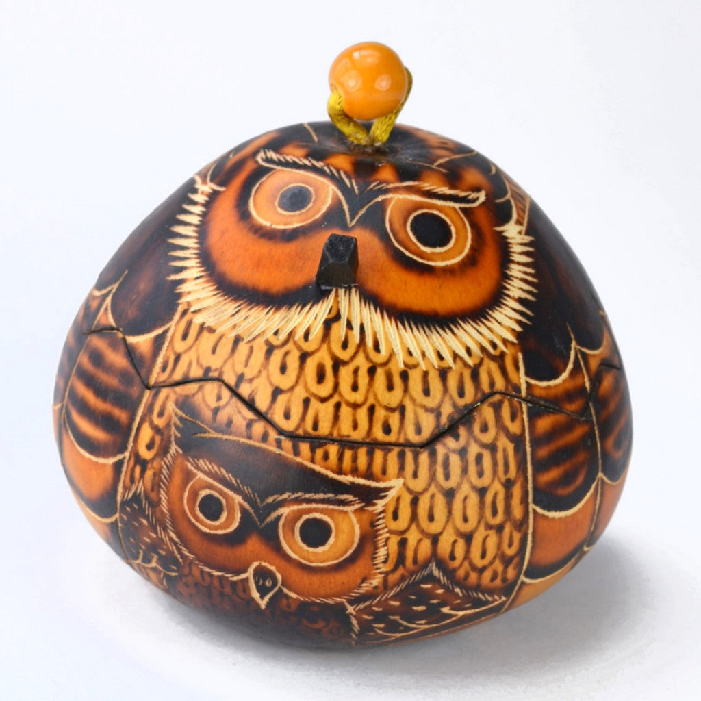 Owl Gourd Box | Owl gifts, keepsake box for owl decor, gourd art